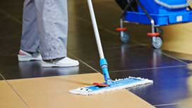 Expert hard floor cleaning